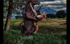caval&atilde_o empalando a raposinha
