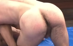 CurtoPezaoBH - Wrestling