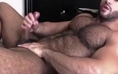 Young muscle bear JO