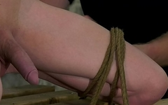 Gorgeous ginger sub tied up for BDSM jerk off session