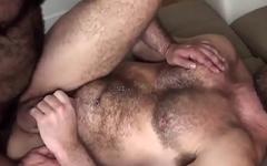 Hot bareback bears