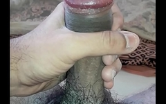 My cock 23-10-2018